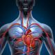 angiologia e1481284145345
